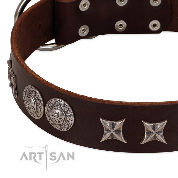 Awesome leather dog collar with rust resistant D-ring