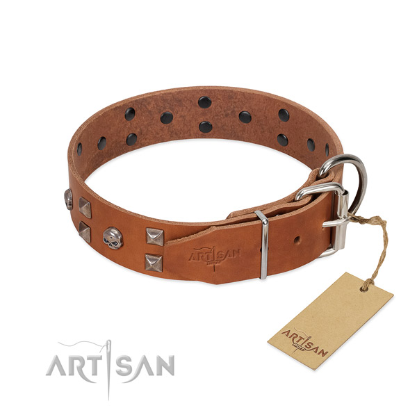 Handcrafted natural leather dog collar with strong fittings
