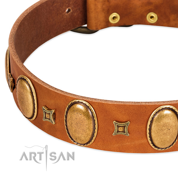 Full grain natural leather dog collar with rust resistant traditional buckle for comfy wearing