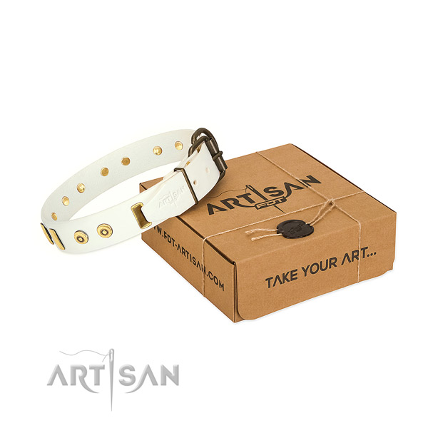 Full grain leather dog collar with significant embellishments for fancy walking