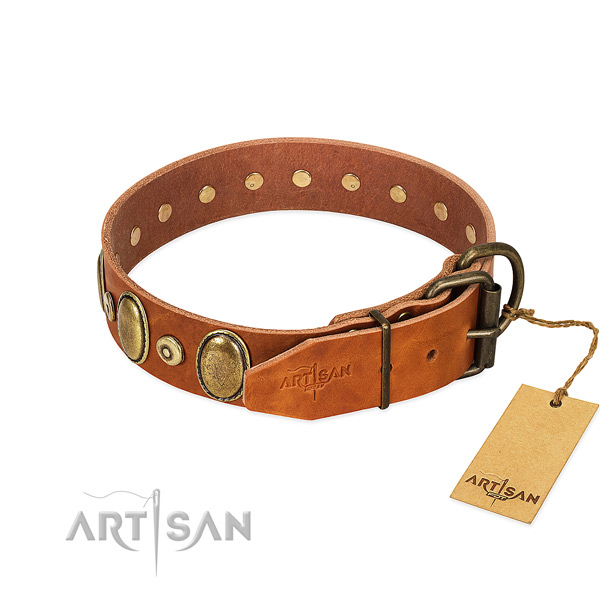 Durable buckle on comfy wearing collar for your canine