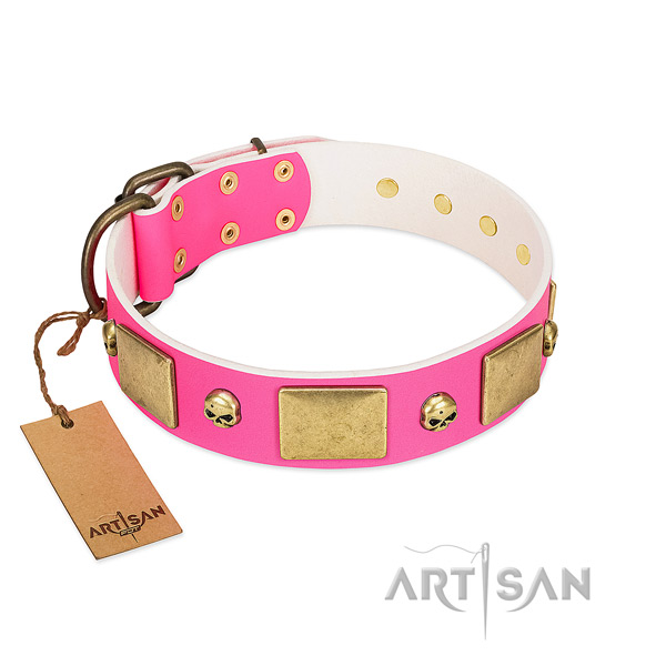 Soft to touch genuine leather collar with rust resistant embellishments for your doggie