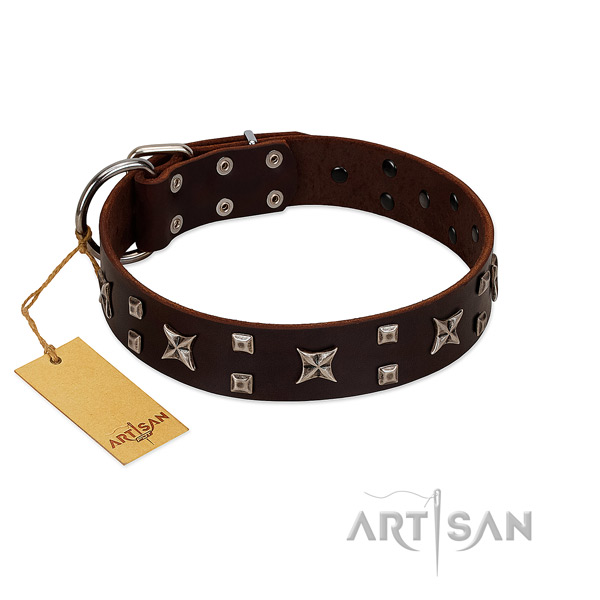 High quality full grain leather dog collar with decorations for walking