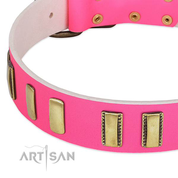 Gentle to touch genuine leather dog collar with adornments for stylish walking