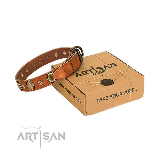 Durable adornments on easy wearing collar for your doggie