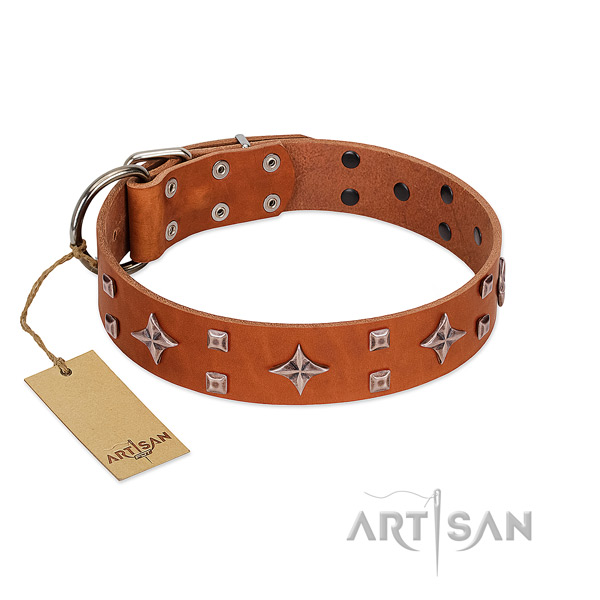 Exquisite genuine leather collar for your doggie stylish walking