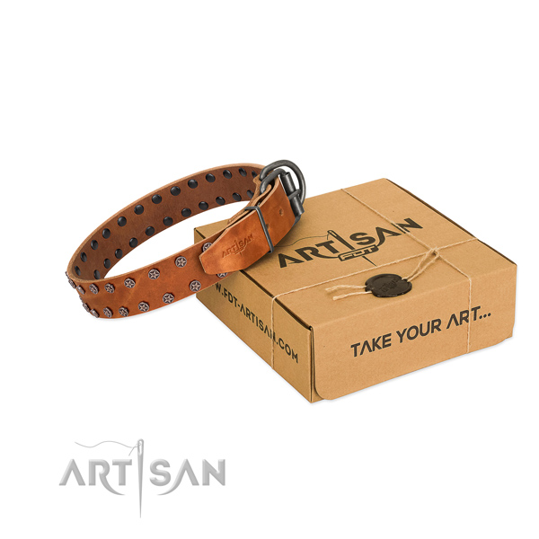Soft genuine leather dog collar with decorations for your stylish dog
