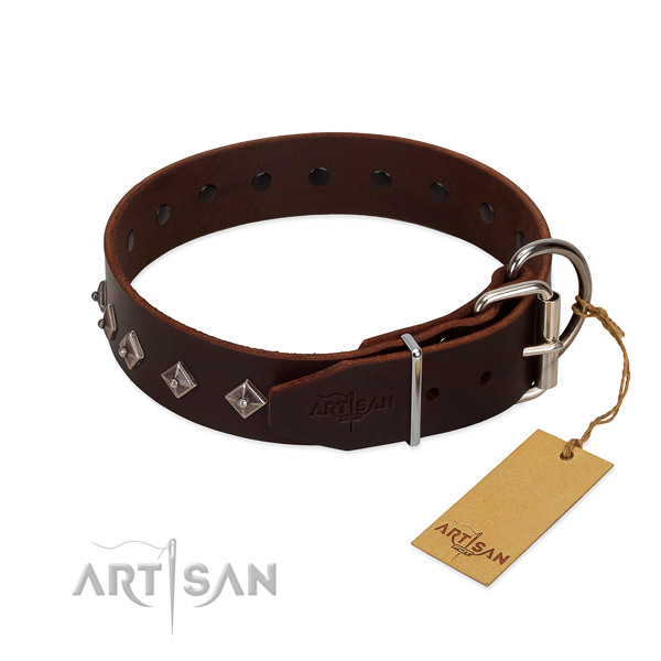Amazing decorations on leather collar for everyday use your pet