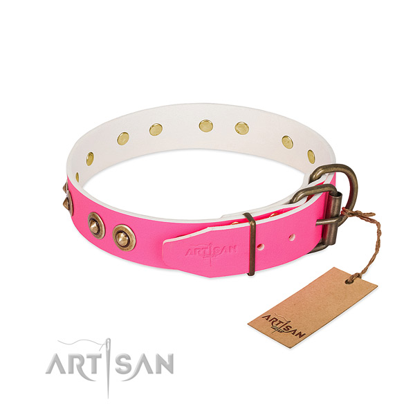 Natural genuine leather dog collar with strong hardware and embellishments