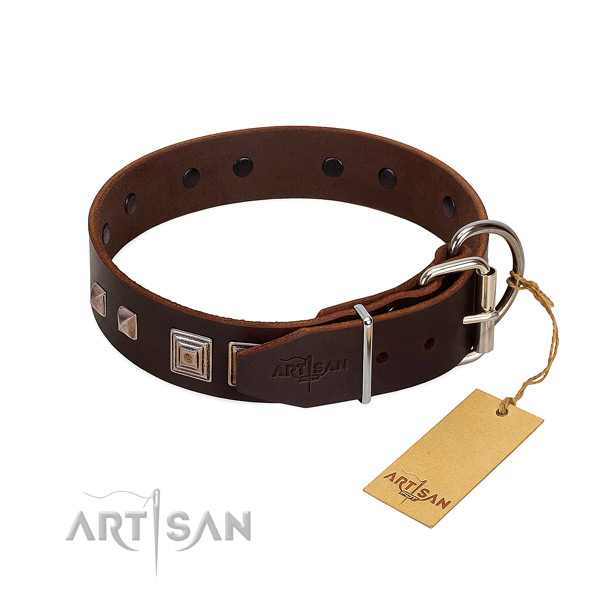 Daily use full grain genuine leather dog collar with significant studs