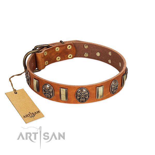 Handcrafted full grain natural leather dog collar for basic training