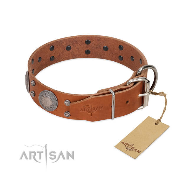 Reliable hardware on full grain leather dog collar for walking