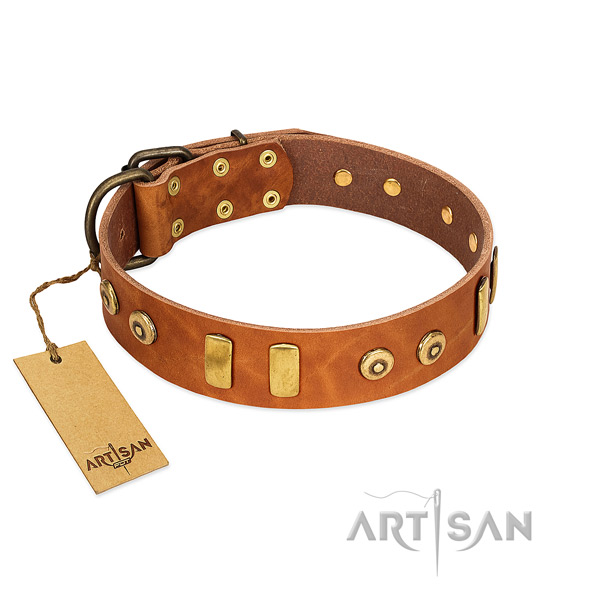 Genuine leather dog collar with exquisite studs for everyday walking