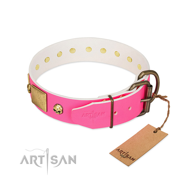 Rust resistant embellishments on high quality full grain leather dog collar