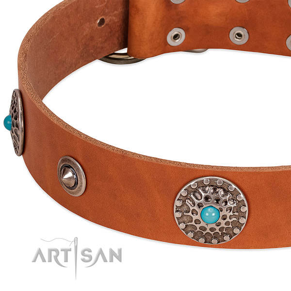 Handy use top rate leather dog collar with adornments