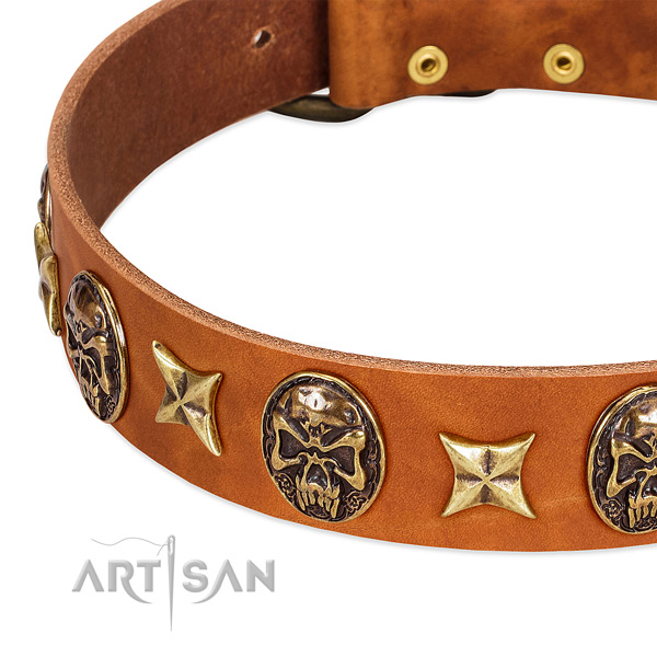 Rust-proof traditional buckle on natural genuine leather dog collar for your doggie