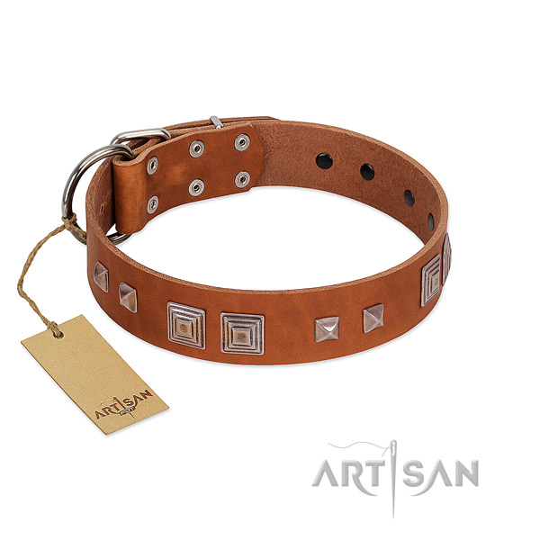 Rust resistant fittings on genuine leather dog collar for daily use