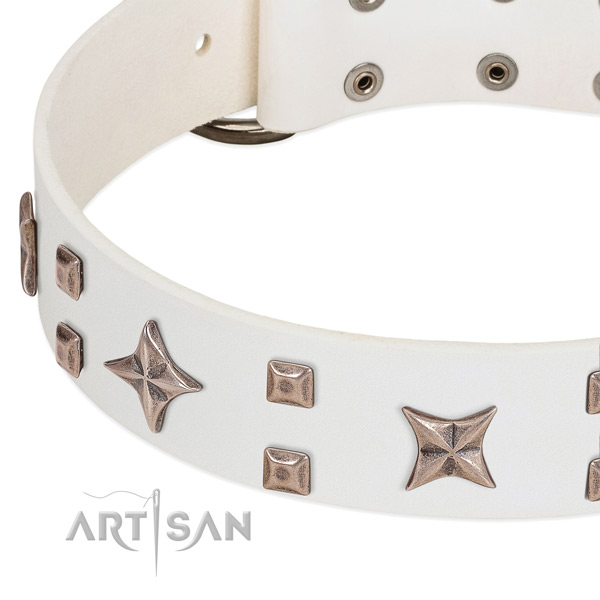 Reliable hardware on leather collar for stylish walking your four-legged friend