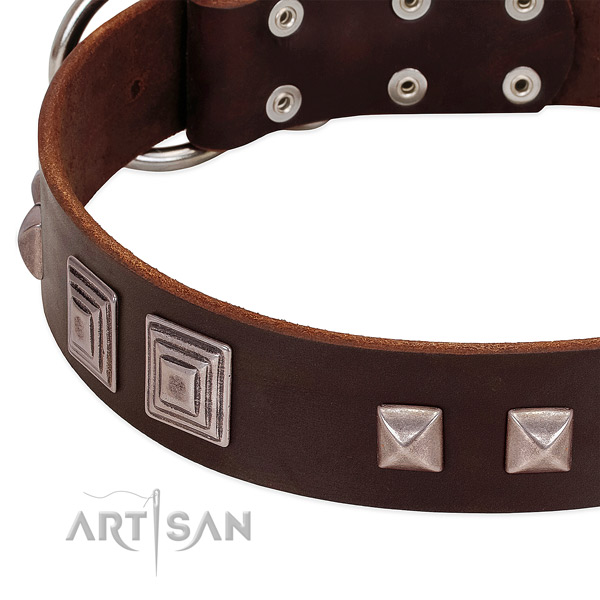 Strong hardware on genuine leather dog collar for comfy wearing