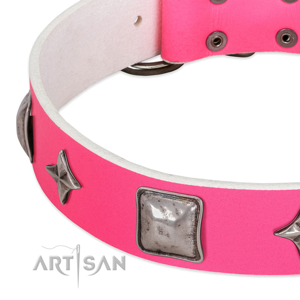 Exceptional genuine leather dog collar with corrosion proof decorations