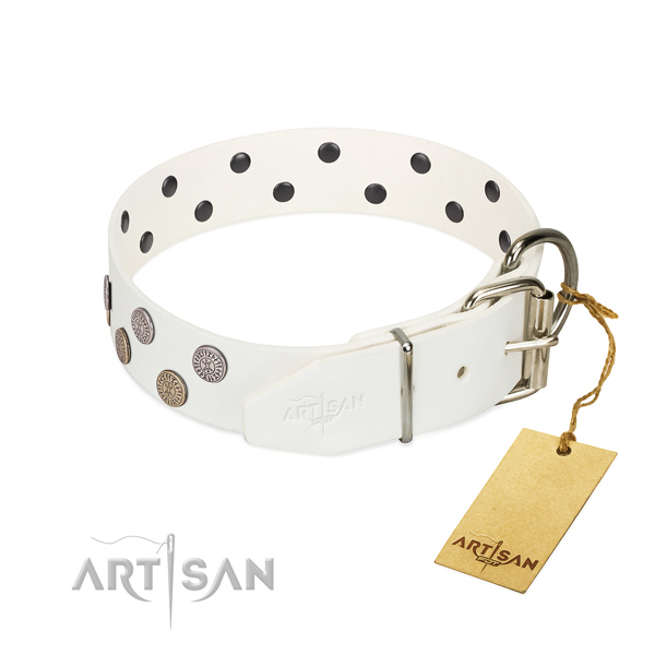 Reliable hardware on full grain genuine leather dog collar for everyday use