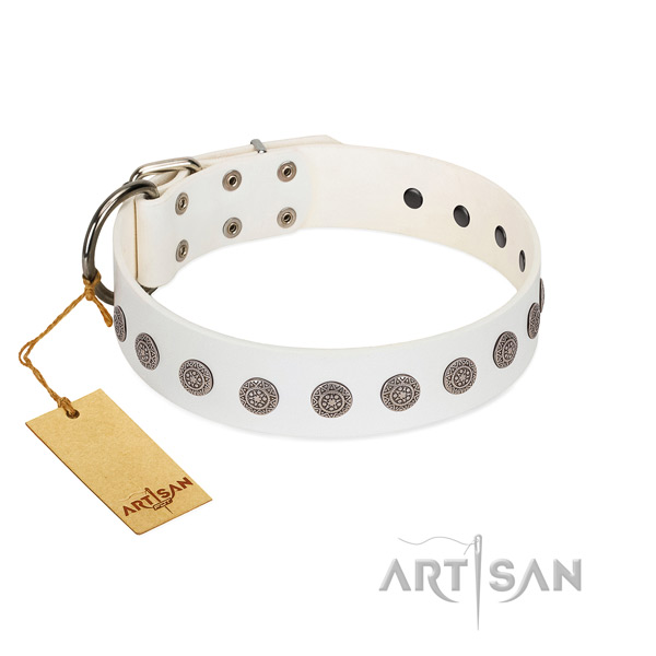 Stylish design decorations on genuine leather collar for handy use your doggie