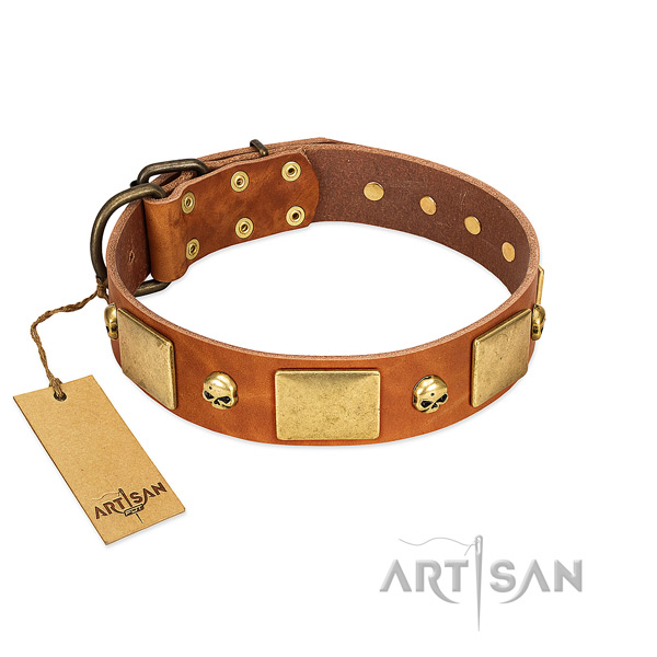 Top rate natural leather dog collar with corrosion proof embellishments
