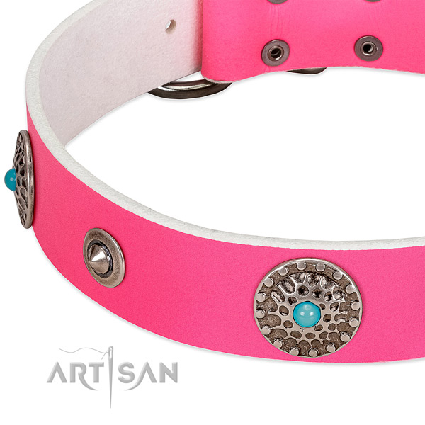 Perfect fit collar of natural leather for your stylish canine