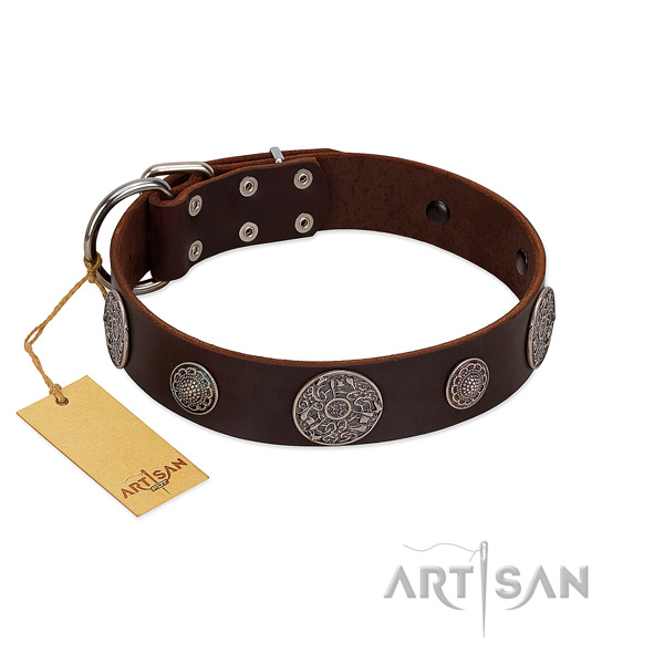 Incredible leather collar for your impressive doggie