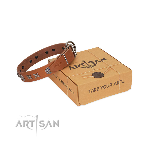 Daily use dog collar of genuine leather with fashionable studs