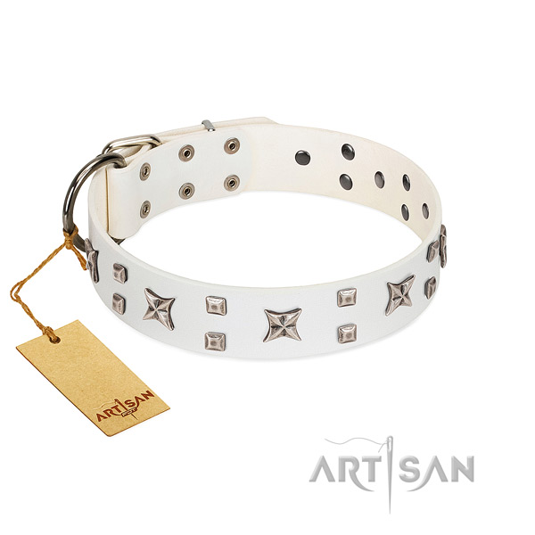 Soft natural leather dog collar with adornments for everyday walking