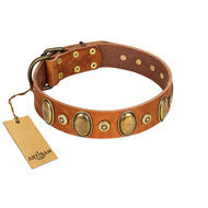 """Crystal Sand"" FDT Artisan Tan Leather German Shepherd Collar with Vintage Looking Oval and Round Studs"