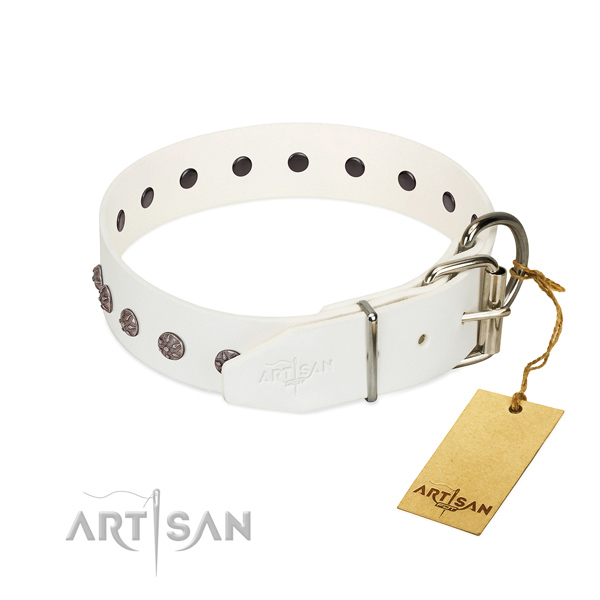 High quality full grain leather dog collar with decorations for your canine