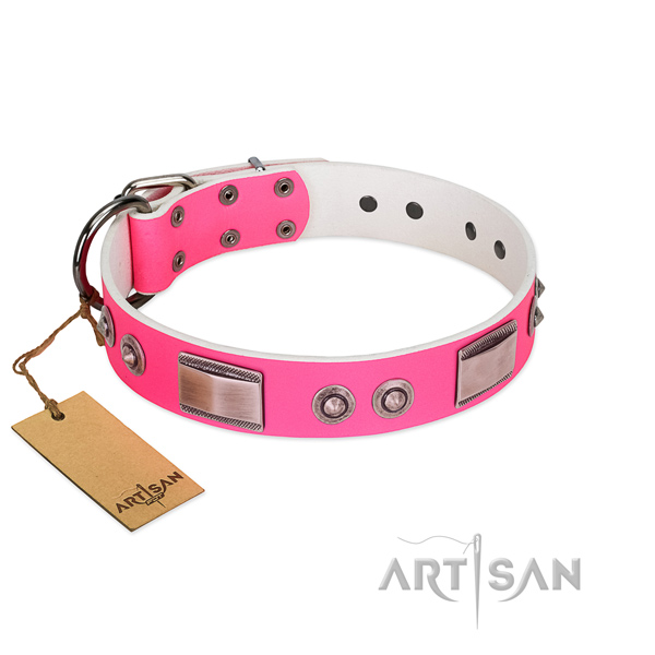 Impressive genuine leather collar with decorations for your four-legged friend