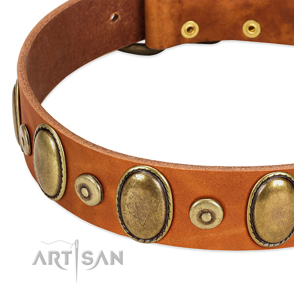 Adorned natural genuine leather collar for your beautiful dog