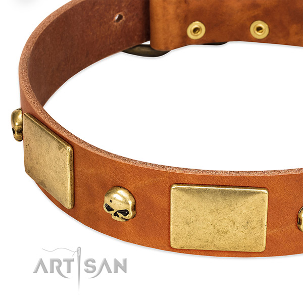 Top notch full grain genuine leather dog collar with corrosion resistant D-ring