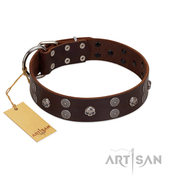Comfy wearing studded full grain natural leather collar for your pet