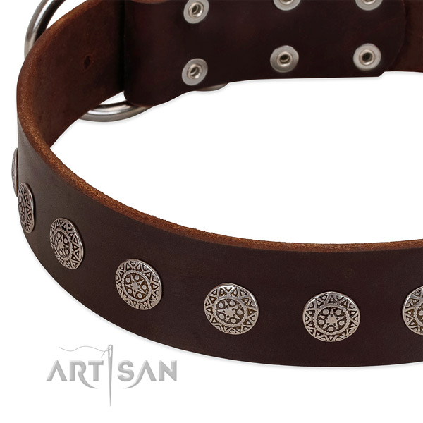 Awesome dog collar of genuine leather with embellishments