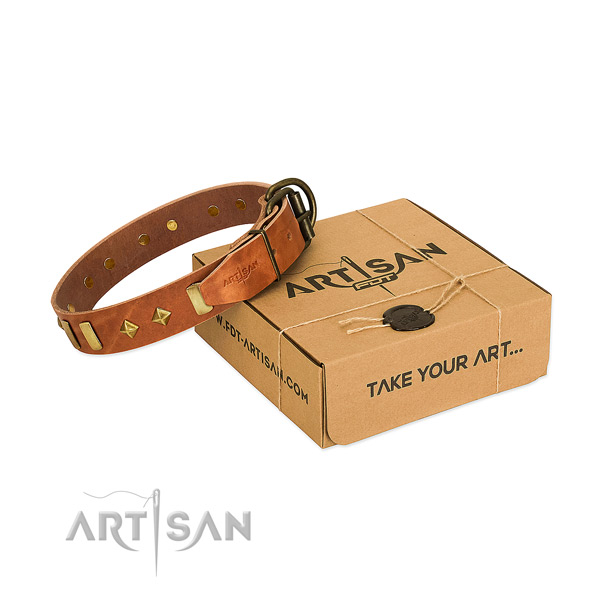 Comfy wearing top notch natural leather dog collar with adornments