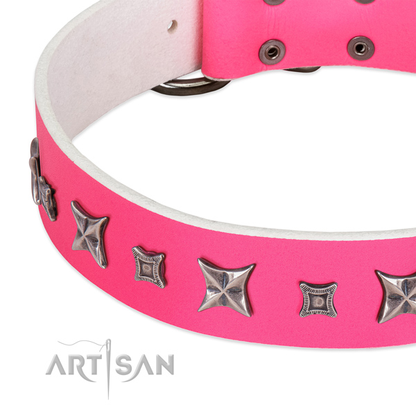 Easy wearing studded full grain genuine leather collar for your doggie
