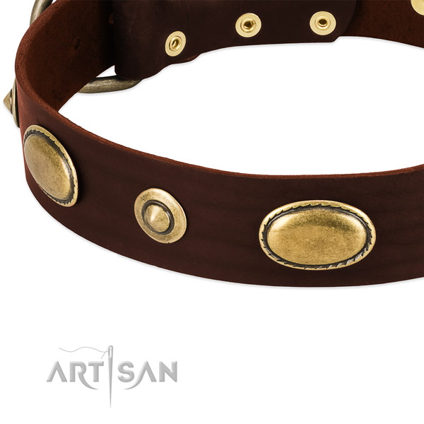 Corrosion resistant hardware on leather dog collar for your pet