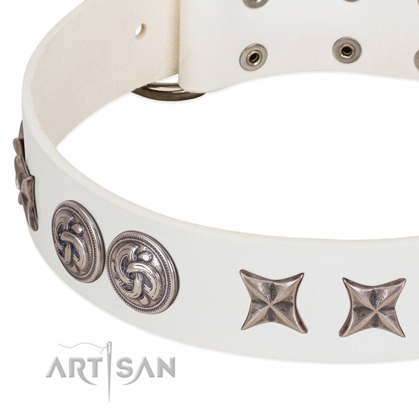 Leather collar with unusual embellishments for your canine