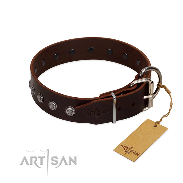 Genuine leather dog collar with exquisite embellishments handmade four-legged friend