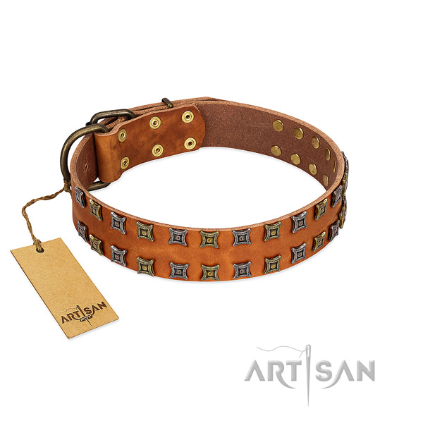 Soft to touch leather dog collar with decorations for your pet