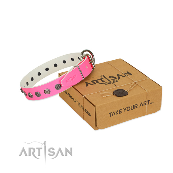 Genuine leather dog collar of quality material with stylish design studs