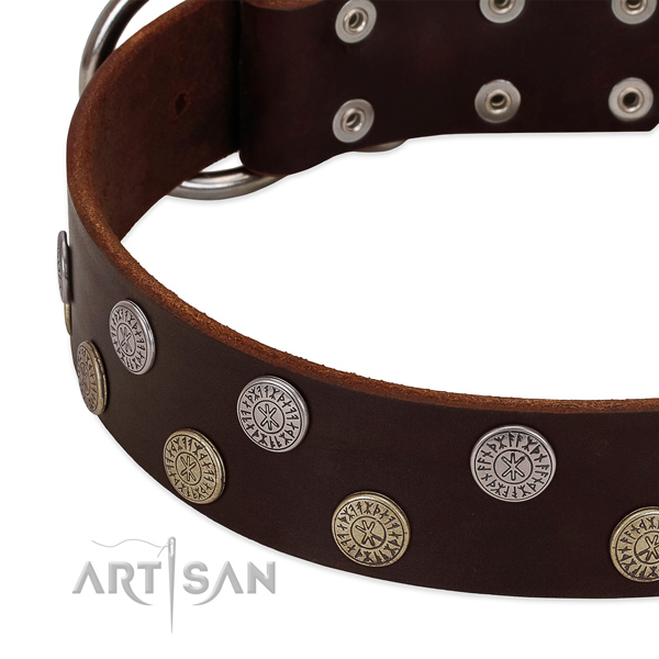 Soft to touch natural leather dog collar with adornments for your attractive pet