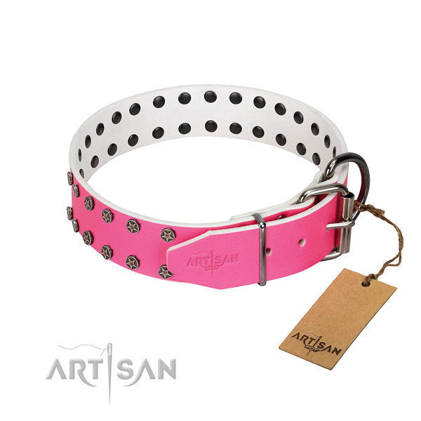 Reliable full grain natural leather dog collar with studs for your dog