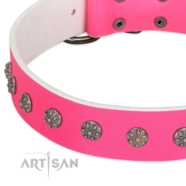 Top rate full grain genuine leather dog collar with adornments for your four-legged friend