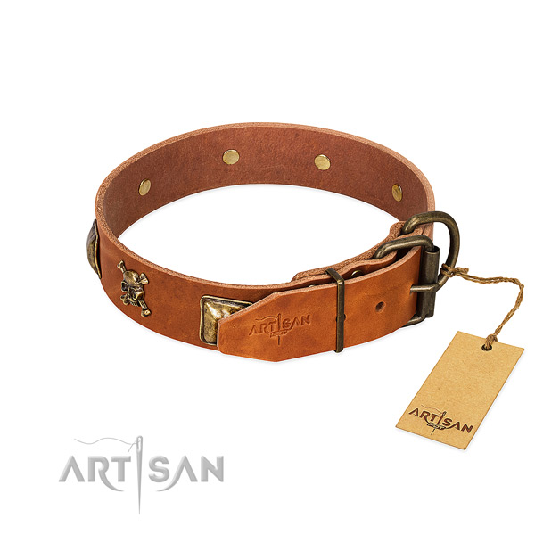 Awesome full grain natural leather dog collar with rust-proof studs