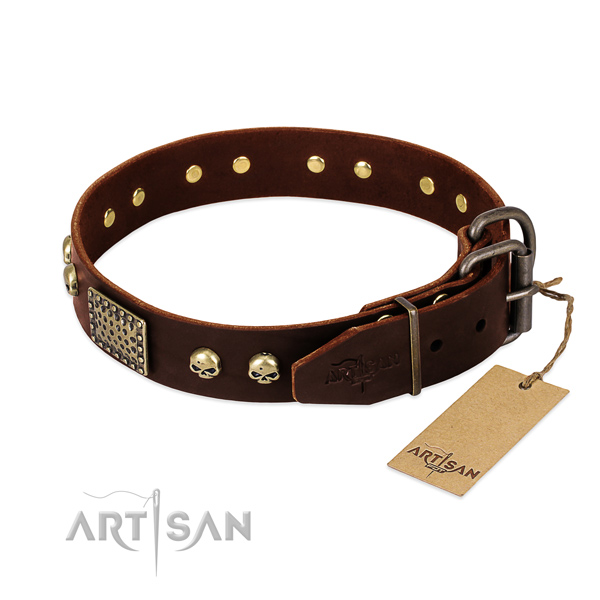 Rust resistant embellishments on comfy wearing dog collar